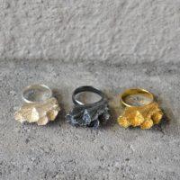 Lyra ring alle (3)